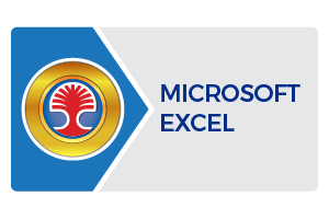 Learning Tree Microsoft Excel Certification