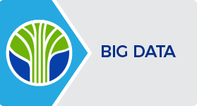 Learning Tree Big Data Certification