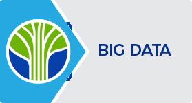 Learning Tree Big Data Certification